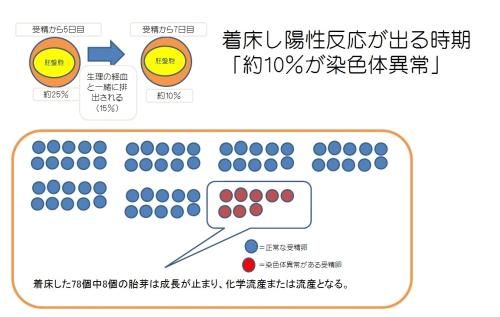受精卵と染色体異常との関連性のイラスト1
