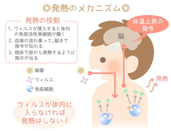 子どもの発熱メカニズム