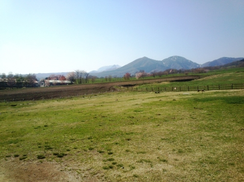 蒜山高原3