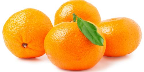 orange1124-19