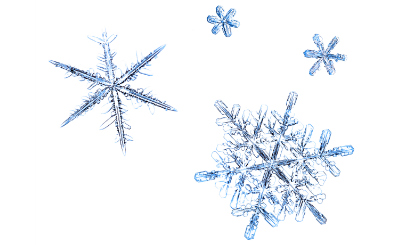 snow-flake-11041