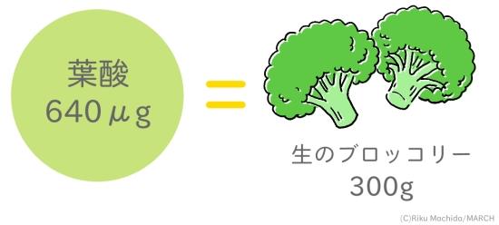 生ブロッコリーに含まれる葉酸