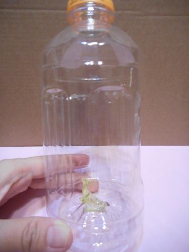 ペットボトルのスノードームの作り方の手順2
