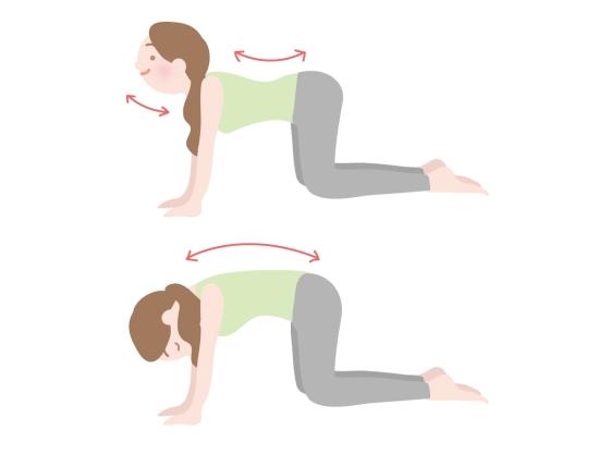 便秘解消や胃腸の不調の改善10137