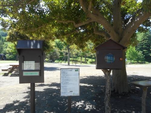 生田緑地公園の景色画像7