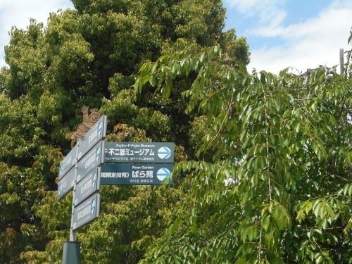 生田緑地公園の景色画像18