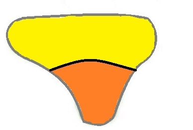 スワドルミーの形