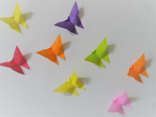 ちょうちょを折り紙で折った完成画像