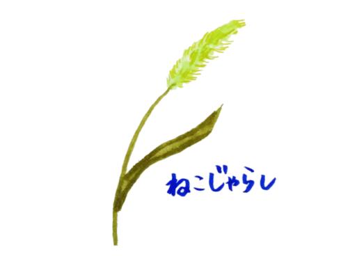 草花で遊ぶ方法を伝えているイラスト画像