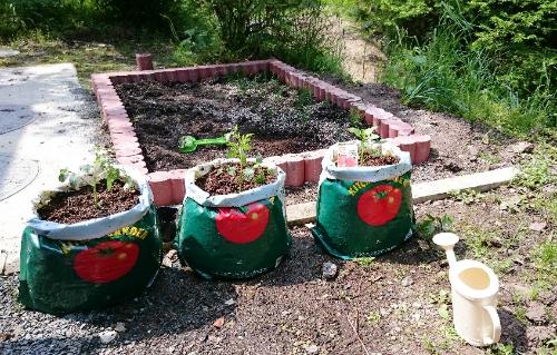 gardening-with-child0517-9