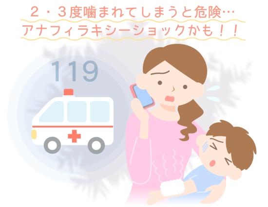 2回3回噛まれてしまったら救急車を呼びましょう0707