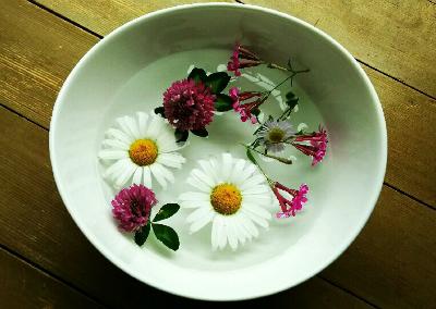 flowers-play84562-7