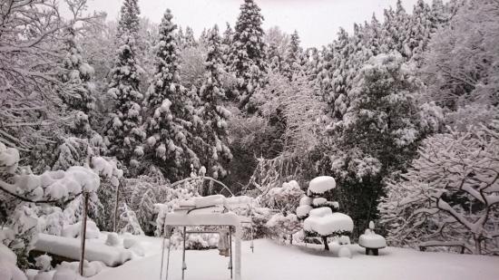 冬の外遊びは合理的…意外なメリット-1104-1