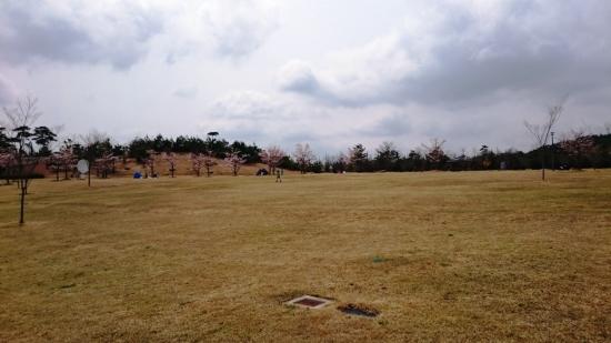 のんびり草原エリア0502-9