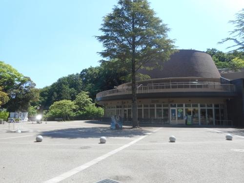 生田緑地公園の景色画像6