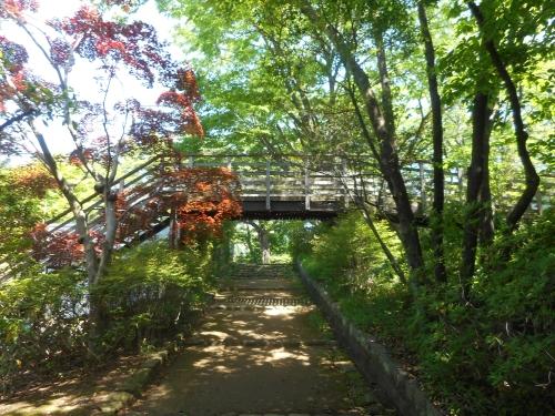生田緑地公園の景色画像11