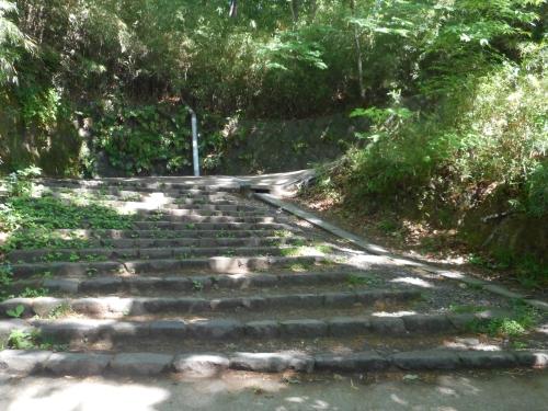 生田緑地公園の景色画像3