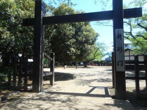 生田緑地公園の景色画像5